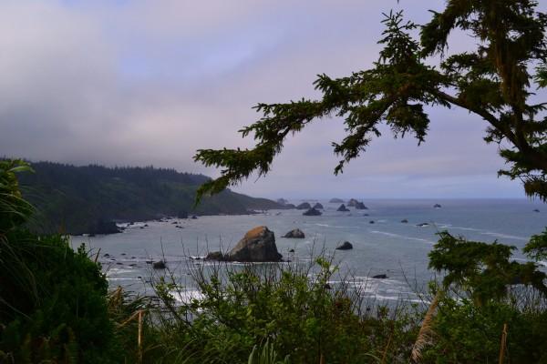 Oregon pacific Coast Highway