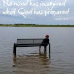 rowan flooded bench2
